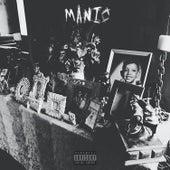 Manic by Kipp Stone