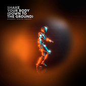 Shake Your Body (Down to the Ground) von George White Group