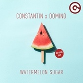 Watermelon Sugar (Bb Team Edit) de Constantin