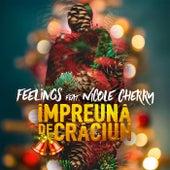 Împreună de Crăciun von The Feelings