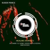 Healing (Remixes) de Buder Prince