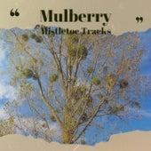 Mulberry Mistletoe Tracks von Doris Day, Boston Pops Orchestra, Mr Blobby, Denny Chew