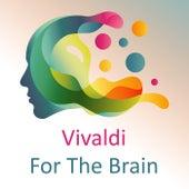 Vivaldi For The Brain by Antonio Vivaldi