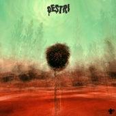 Destri (Live Session) fra Pietro Ghiselli