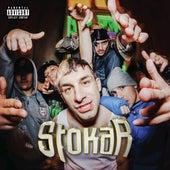 STOKAR by Frayer Flexking