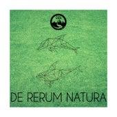 De Rerum Natura, Vol. 2 de Various Artists