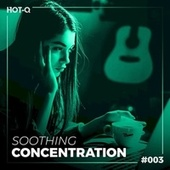 Soothing Concentration 003 by Various Artists