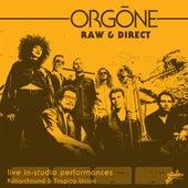 Raw & Direct von Orgone