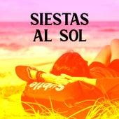 Siestas al sol by Various Artists