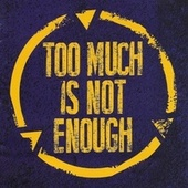Too Much Is Not Enough by Band Of Friends