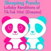 Dreams von Sleeping Panda