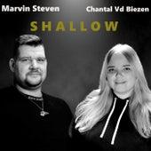 Shallow de Chantal Vd Biezen