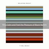 Stay Calm and Feel the Pleasure of Black Noises by Deep Sleep Meditation