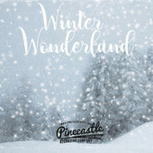 Winter Wonderland by Pinecastle Records