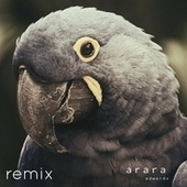 Arara (Remix) by Edward-X