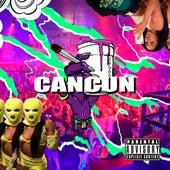 Cancun by TMT Plank