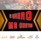Te Quiero  Me Gustas by Los Yes Yes
