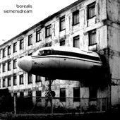 Siemensdream by Borealis