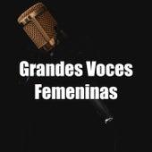 Grandes Voces Femeninas by Various Artists