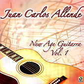 New Age Guitarra, Vol.1 by Juan Carlos Allende
