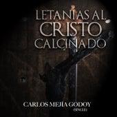 Letanias al Cristo Calcinado (feat. Alma Rodriguez) de Carlos Mejia Godoy