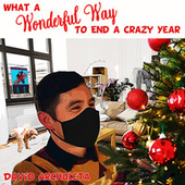 What a Wonderful Way to End a Crazy Year by David Archuleta