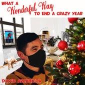 What a Wonderful Way to End a Crazy Year de David Archuleta