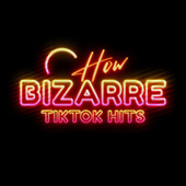 How Bizarre TickTock Hits by Various Artists