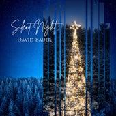 Silent Night de David Bauer