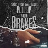 Pull Up Your Brakes by Carlos Cosby
