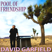 Pool of Friendship by David Garfield