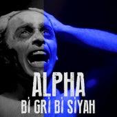 Bi Gri Bi Siyah de Alpha