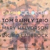 Camino Cielo Echo by Tom Rainey Trio