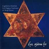 Lys, stjarna lys by Various Artists