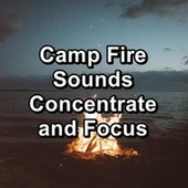 Camp Fire Sounds Concentrate and Focus by S.P.A
