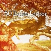 80 Raise Torpor von Best Relaxing SPA Music