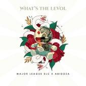 What's The Levol von Major League Djz