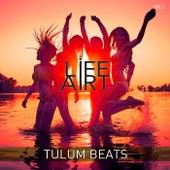 Lifeart - Tulum Beats, Vol. 2 von Ariel Vromen