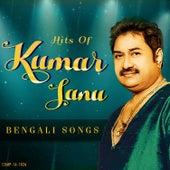 Hits Of Kumar Sanu by Kishore Desai