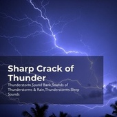 Sharp Crack of Thunder by Thunderstorm Sound Bank