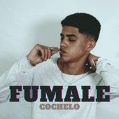 Fumale by Cochelo