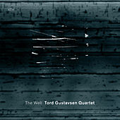 The Well by Tord Gustavsen Quartet