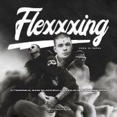 Flexxxing (feat. Primer Dan) by C.Terrible