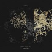 The Next Billion Years (Rework EP) von Robot Koch