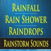 Rainfall, Rain Shower, Raindrops, Rainstorm Sounds by The Kokorebee Sun
