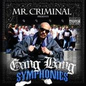 Gang Bang Symphonies by Various Artists