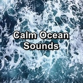Calm Ocean Sounds by S.P.A