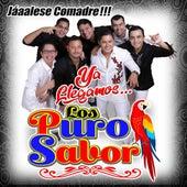 Jáaalese Comadre, Ya Llegamos by Los Puro Sabor