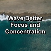 Wave Better Focus and Concentration by Spa Music (1)