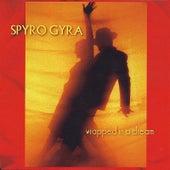 Wrapped in a Dream von Spyro Gyra